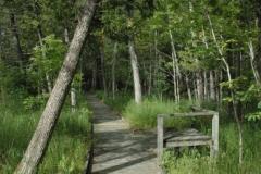 purdon-boardwalk-1